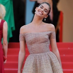 Best Pink Gowns Cannes 2018 Red Carpet