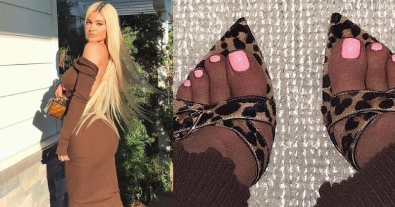 Kylie Jenner Animal Print Brown Mules by Gianvito Rossi