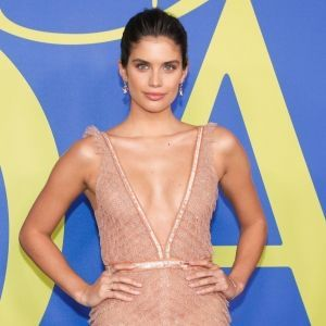 Sara Sampaio Shimmery Pink Gown Red Carpet CFDA Fashion Awards 2018